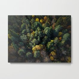 Forest Landscape - Aerial Photography Metal Print