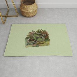 Snake Wildlife Illustration Rug