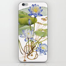 Blue Water Lily Botanical iPhone & iPod Skin
