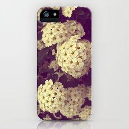 Secret Garden   Vanhoutte Spirea iPhone Case
