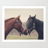 horses Art Prints featuring Horses  by Laura Ruth