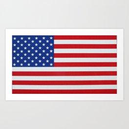 American Flag 001 Art Print