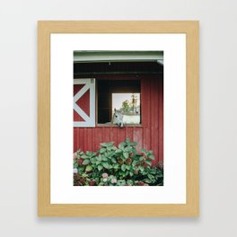 Horse in the Barn Framed Art Print