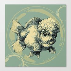 Bubble Head Fish Canvas Print