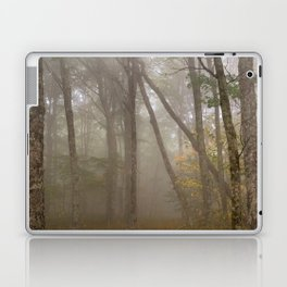 Misty Spruce Knob Forest Laptop & iPad Skin