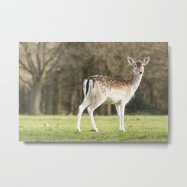 Mum...you there? Metal Print