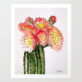 Blooming Cacti Art Print