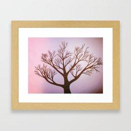 Pink Tint Tree Framed Art Print