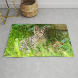 Beautiful Baby cat in the Grass Rug