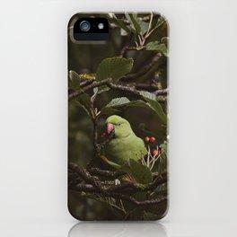 Hidden Look iPhone Case