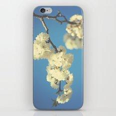 Perfect iPhone & iPod Skin