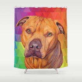 Rainbow puppy Shower Curtain