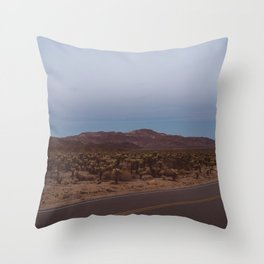 Cholla Cactus Garden XVIII Throw Pillow