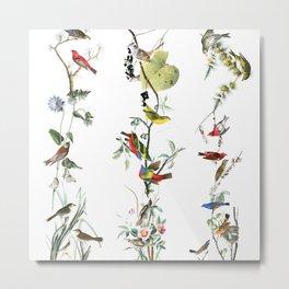 Birds - Art - Vintage - Pattern - Illustration - Nature Metal Print