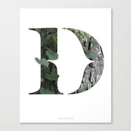 LL Series: D Canvas Print