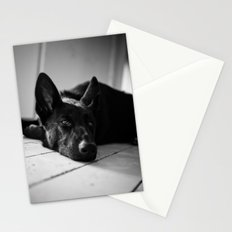 Dog German Shepherd  Stationery Cards