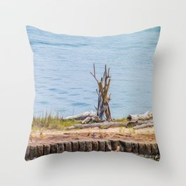 Intertwined Thoughts Throw Pillow