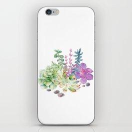 Succulents iPhone Skin