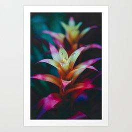 Light the Night Art Print