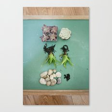 to grow Canvas Print