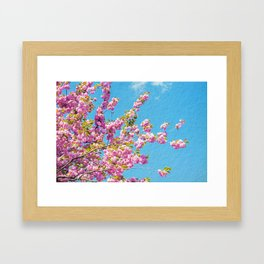 INTO THE PINK Framed Art Print