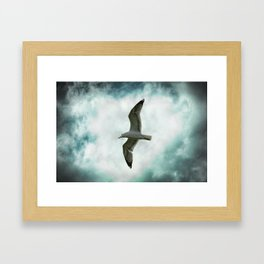 Seagull Before A Cloudy Sky Framed Art Print