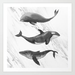 Ocean Whales Marble Black and White Art Print