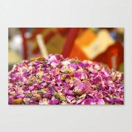Spices Canvas Print