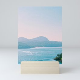 Film Shot Washington Park Turquoise Views Mini Art Print