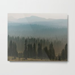 Hazy Pine Tree Layers in Banff Metal Print