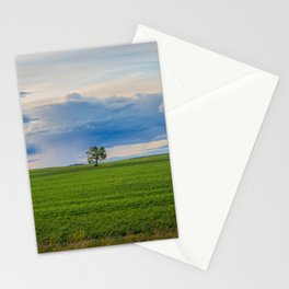 Montana June Prairie 13 Stationery Cards