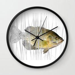 Black Crappie Fish Wall Clock