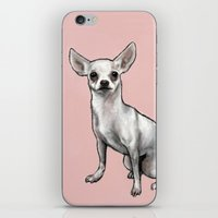 chihuahua iPhone & iPod Skins featuring Chihuahua by Seni