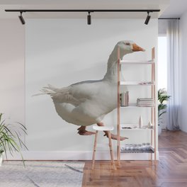 Lovely Weather For Ducks Vector Wall Mural