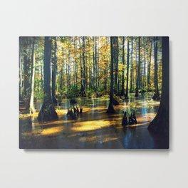 Cache River Wetlands Metal Print
