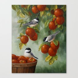Chickadees and Apple Tree Harvest Canvas Print
