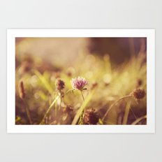 On a Sunny Evening... Art Print