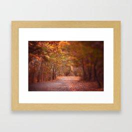 Autumn Walk Framed Art Print
