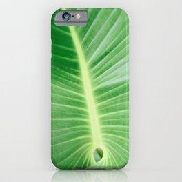 Palm CR iPhone Case