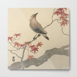 Japanese Maple Songbird  Metal Print