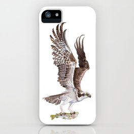 Osprey and Rainbow Trout iPhone Case