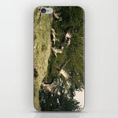 Putreak iPhone & iPod Skin