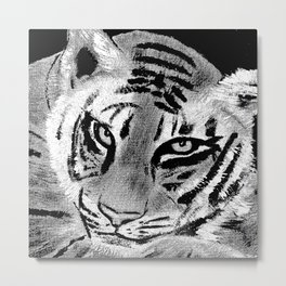 Tiger with White Background Metal Print