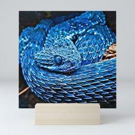 Atheris Squamigera - Rattlesnake Mini Art Print