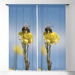 Honey bee on a wildflower Blackout Curtain