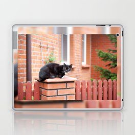 lonely stray black cat sitting Laptop & iPad Skin