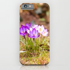 Pretty iPhone 6s Slim Case