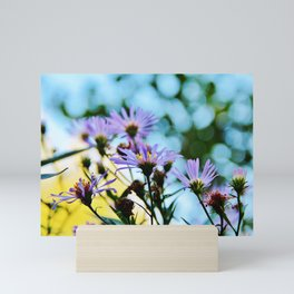 New York Aster in September Mini Art Print