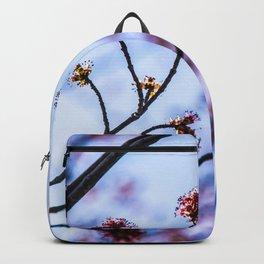 The Fuzz II Backpack