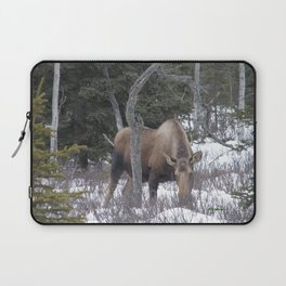 Roadside Browse Laptop Sleeve